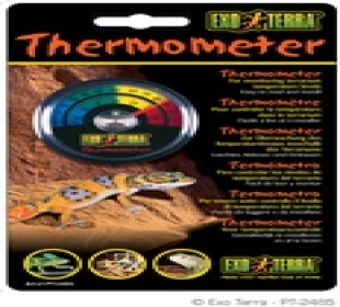 Neon Gecko Exotic Pets Glasgow - Thermometer